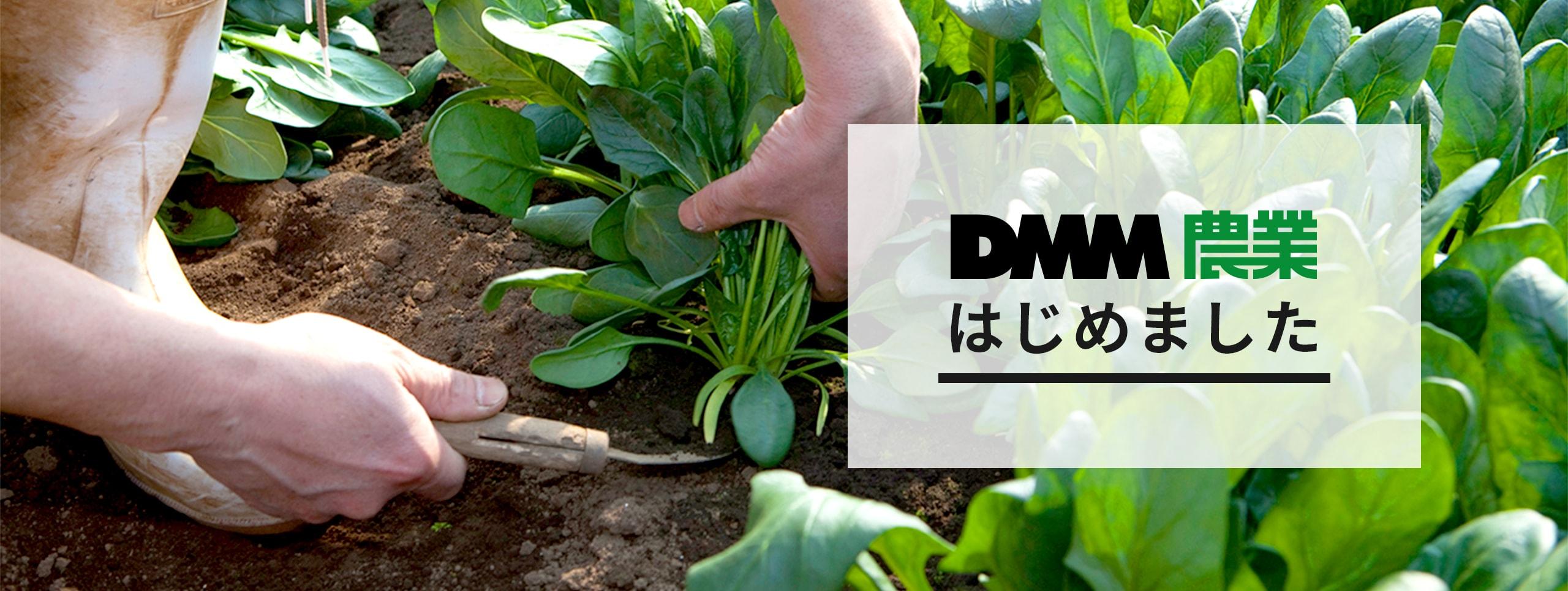 DMM農業はじめました