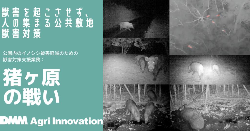 デジタルテクノロジーを活用し、広島県立びんご公園へのイノシシの侵入を軽減することに成功のタイトル画像